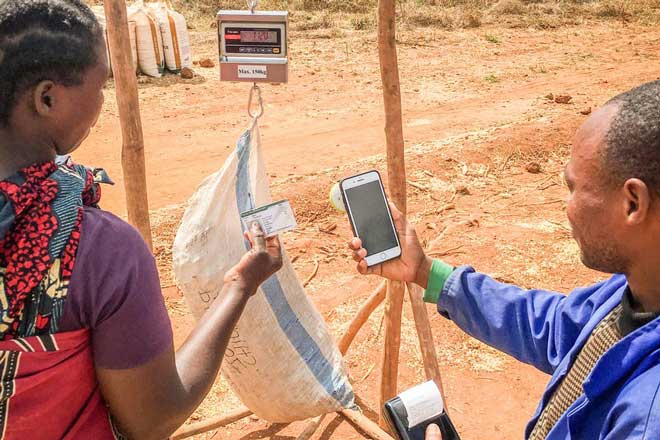 Software for selling seeds and purchasing crops in Malawi? No problem! - Preview Image